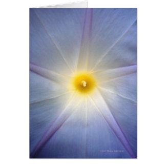 Morning Glory Heart Card