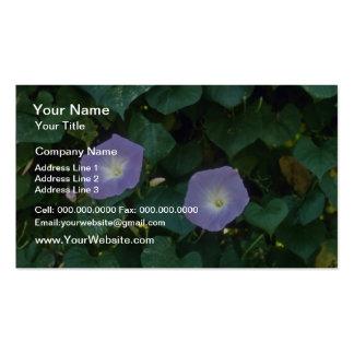 Morning Glory (Ipomoea Purpurea) flowers Business Card