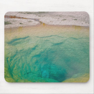 Morning Glory Pool Mouse Pad