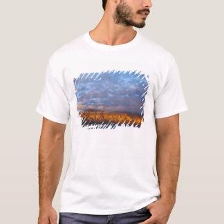 Morning light greets the Sierra de la Giganta T-Shirt