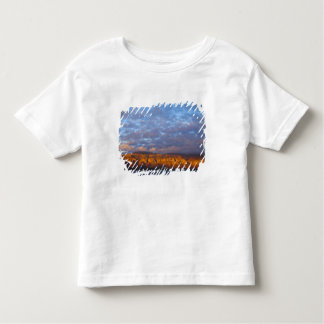 Morning light greets the Sierra de la Giganta T Shirt