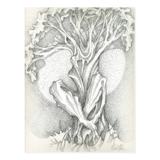 Morning Meditating Tree Postcard