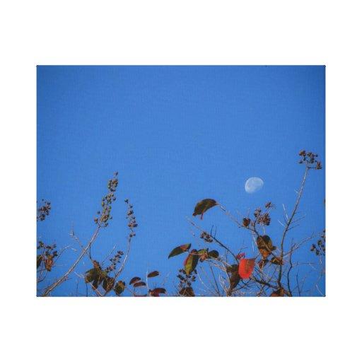morning moon gallery wrap canvas