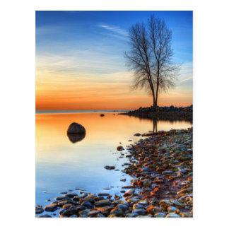 Morning Reflections Postcard