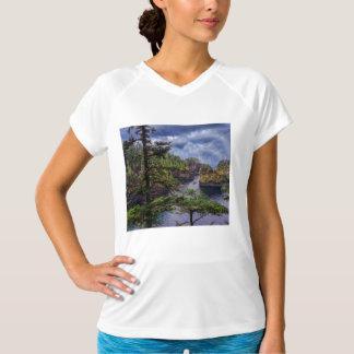 morning sunrise olympic peninsula Cape Flattery T-Shirt