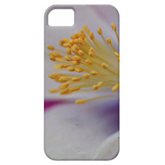 Morning Surveillance iPhone 5 Covers