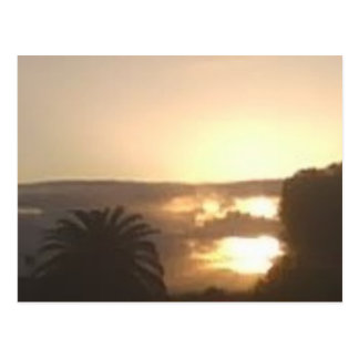 Mornings in San Diego Postcard