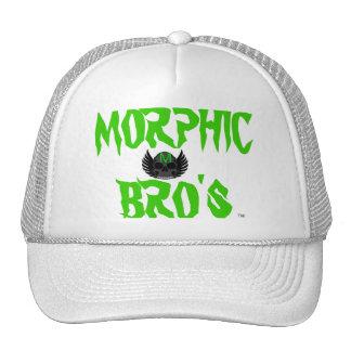 Morphic winged skull hat.