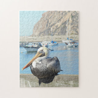 Morro Bay Pelican Puzzles