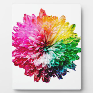 Mosaic Beautiful Multicoloured Flower Plaque