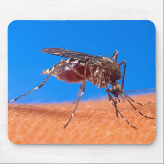 Mosquito Biting Mouse Pad