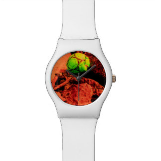 mosquito explorer watch
