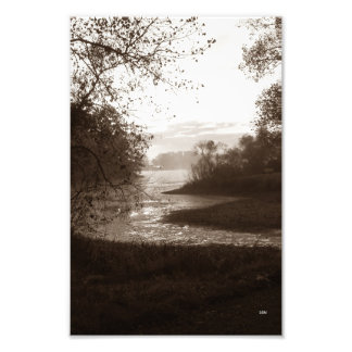 Mosquito Lake State Park (no 3) Photo Print