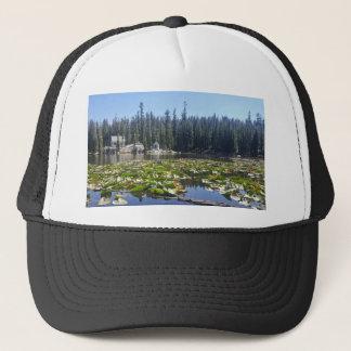 mosquitolake trucker hat