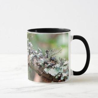 Moss and Lichens Mug