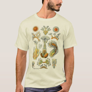 Moss Animals T-Shirt