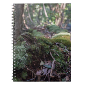 Moss covered fallen tree in a forest notebook