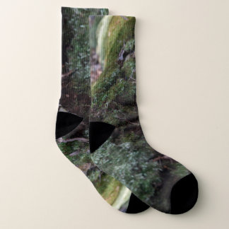 Moss covered fallen tree in a forest socks