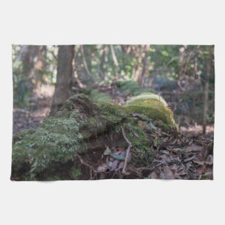 Moss covered fallen tree in a forest tea towel