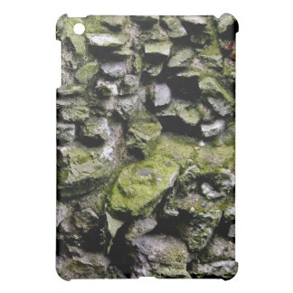 Moss Covered Stone Wall iPad Mini Covers