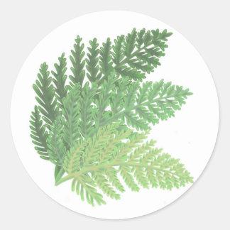 Moss Green Ferns Classic Round Sticker