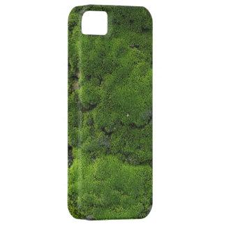 Moss Green iPhone 5 Case