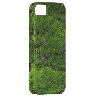 Moss Green iPhone 5 Cover