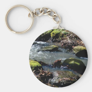 moss in the creek key ring