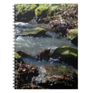 moss in the creek notebooks