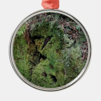 Moss on fallen redwood metal ornament
