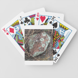 Moss rock lichen bicycle playing cards