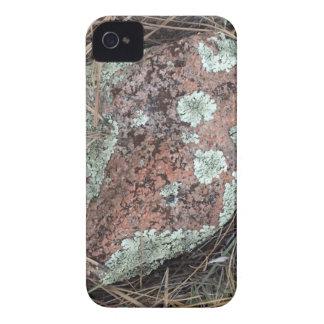 Moss rock lichen iPhone 4 Case-Mate cases
