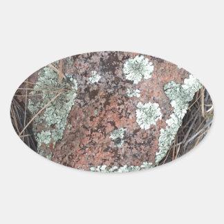 Moss rock lichen oval sticker