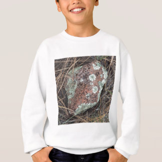 Moss rock lichen sweatshirt