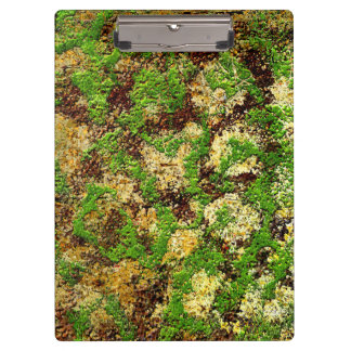 Moss Rust Aged Grunge Old Camouflage Texture Clipboards