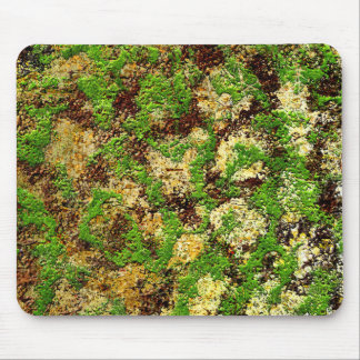 Moss Rust Aged Grunge Old Camouflage Texture Mousepad