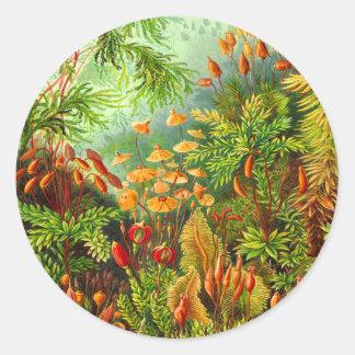 Mosses Classic Round Sticker