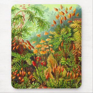 Mosses Mouse Pad