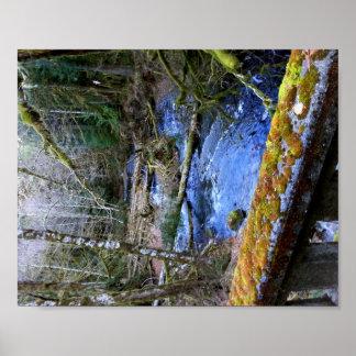 mossy Bridges Near Lake Crescent Lodge Poster
