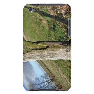 Mossy Dead Tree Trunk iPod Touch Cases