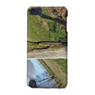 Mossy Dead Tree Trunk iPod Touch 5G Cases