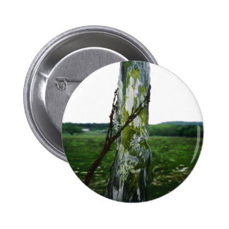 Mossy Fence Post 2 Pinback Button