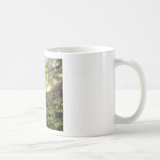Mossy Grace Coffee Mug