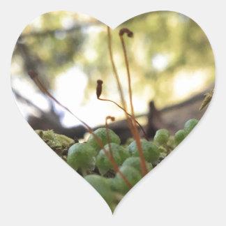 Mossy Grace Heart Sticker