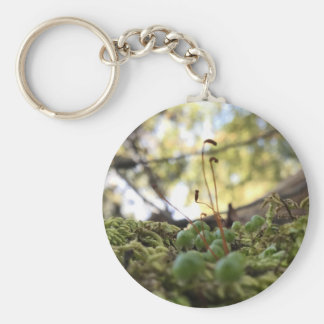 Mossy Grace Key Ring
