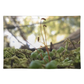 Mossy Grace Placemat