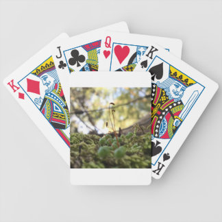 Mossy Grace Poker Deck