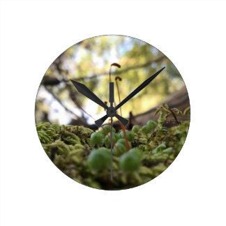 Mossy Grace Round Clock