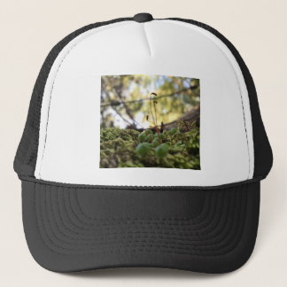 Mossy Grace Trucker Hat