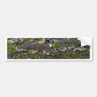 mossy mushroom fun bumper sticker